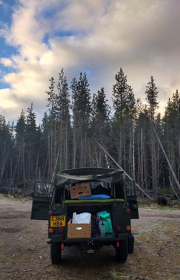 land rover 110 forest camping